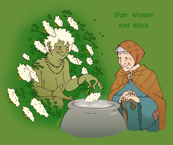 Woman of the Elder Tree HumonComics.com